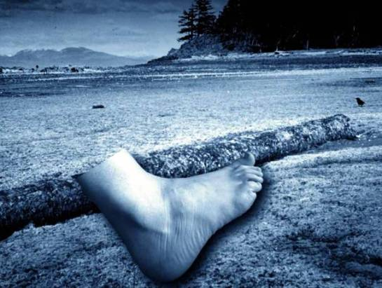 Severed Foot Beach in British Columbia